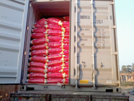 Indian Rice Exporter, Parboiled Rice IR-8